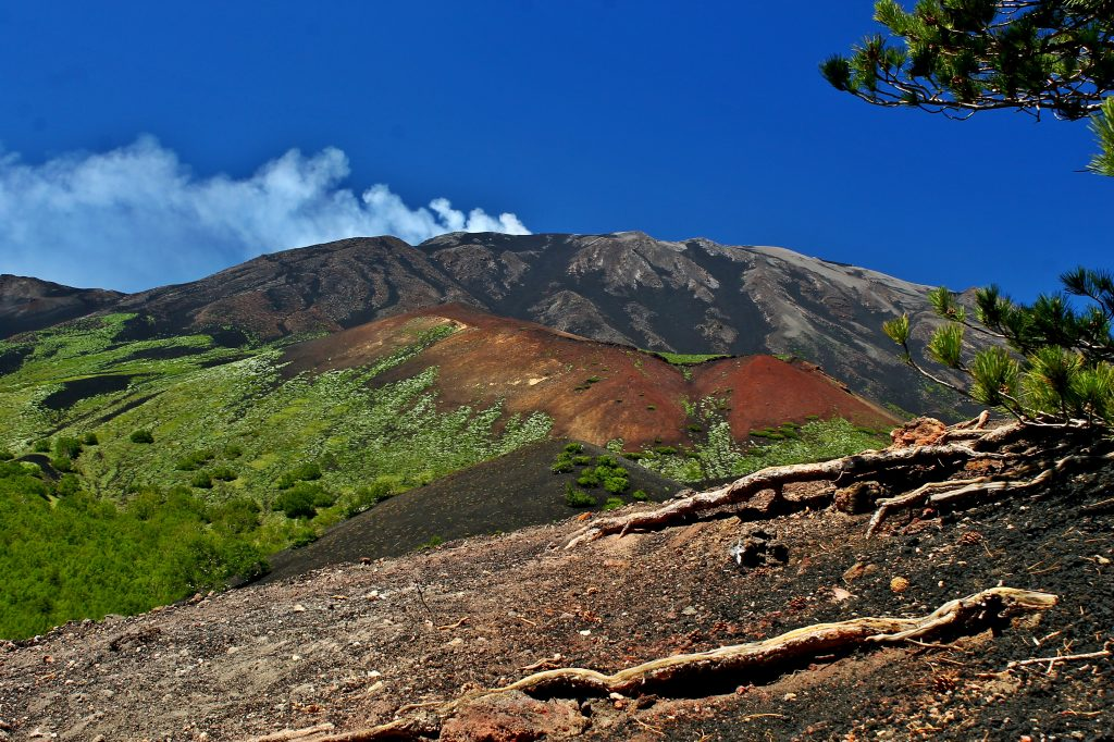 Etna and its landscape