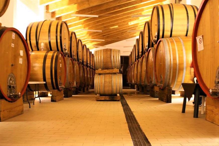 Botti di vino dell'Etna