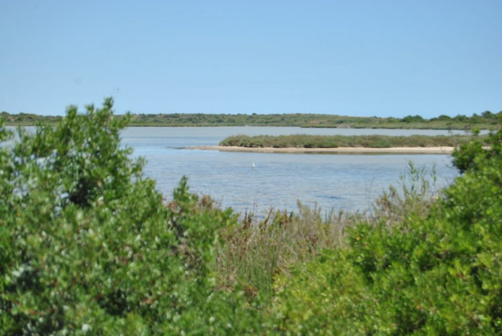 Protected natural reserve in Vendicari